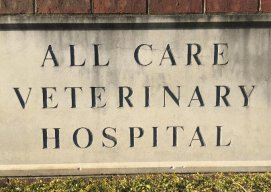 All Care Veterinary Hospital