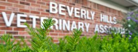 Beverly Hills Veterinary