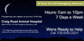 24 hour on call service
