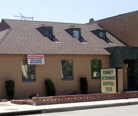 Downey Veterinary Hospital