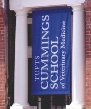 Cummings School of Veterinary