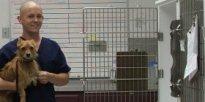 All Pets Medical & Laser