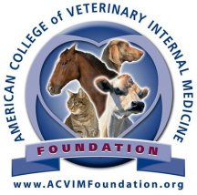 Portland Veterinary