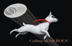 Texas Veterinary Medical