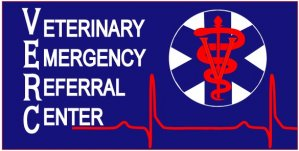 24 HOUR EMERGENCY REFERRAL