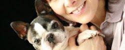 VCA Bay Area Veterinary Specialists