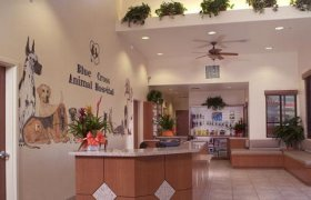 Animal Hospital Las Vegas