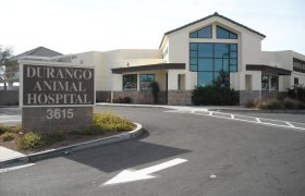Durango Animal Hospital Las Vegas