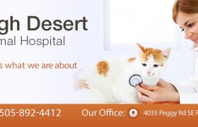 High Desert Veterinary Care