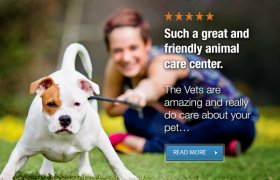 Low Cost Veterinary Care Denver