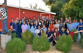 Pierce College Veterinary