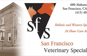 San Francisco Veterinary Specialists