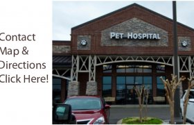 Spring Hill Veterinary Clinic TN