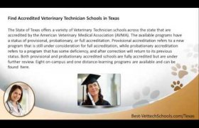 Veterinary Assistant Schools in Texas