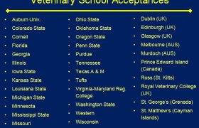 Veterinary colleges in USA