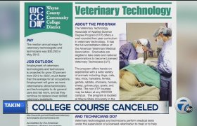 Veterinary Technician Degree Online