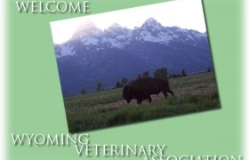 Wyoming Veterinary Medical Association