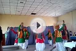 Best trible song dance @veterinary college Rewa,