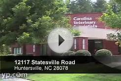 Carolina Veterinary Specialists | Huntersville NC