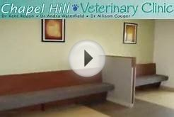 Chapel Hill Veterinary Clinic - Orleans