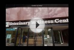 connecticut veterinary center - Veterinary Wellness Center