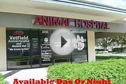 Margate FL Veterinarian Clinic Low Cost 24 hr emergency