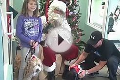 SANTA PAWS at Palmetto Animal League