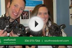 Southwoods Animal Hospital | Veterinary Services in Greensboro