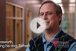 Upstate Veterinary Specialists, Specialty Hospital of the