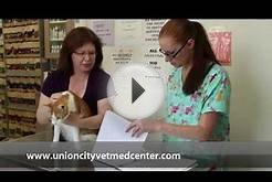 Veterinary Medical Center - Short | Union City, CA