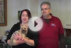Welcome to Hillview Veterinary Clinic - Reynoldsburg, Ohio